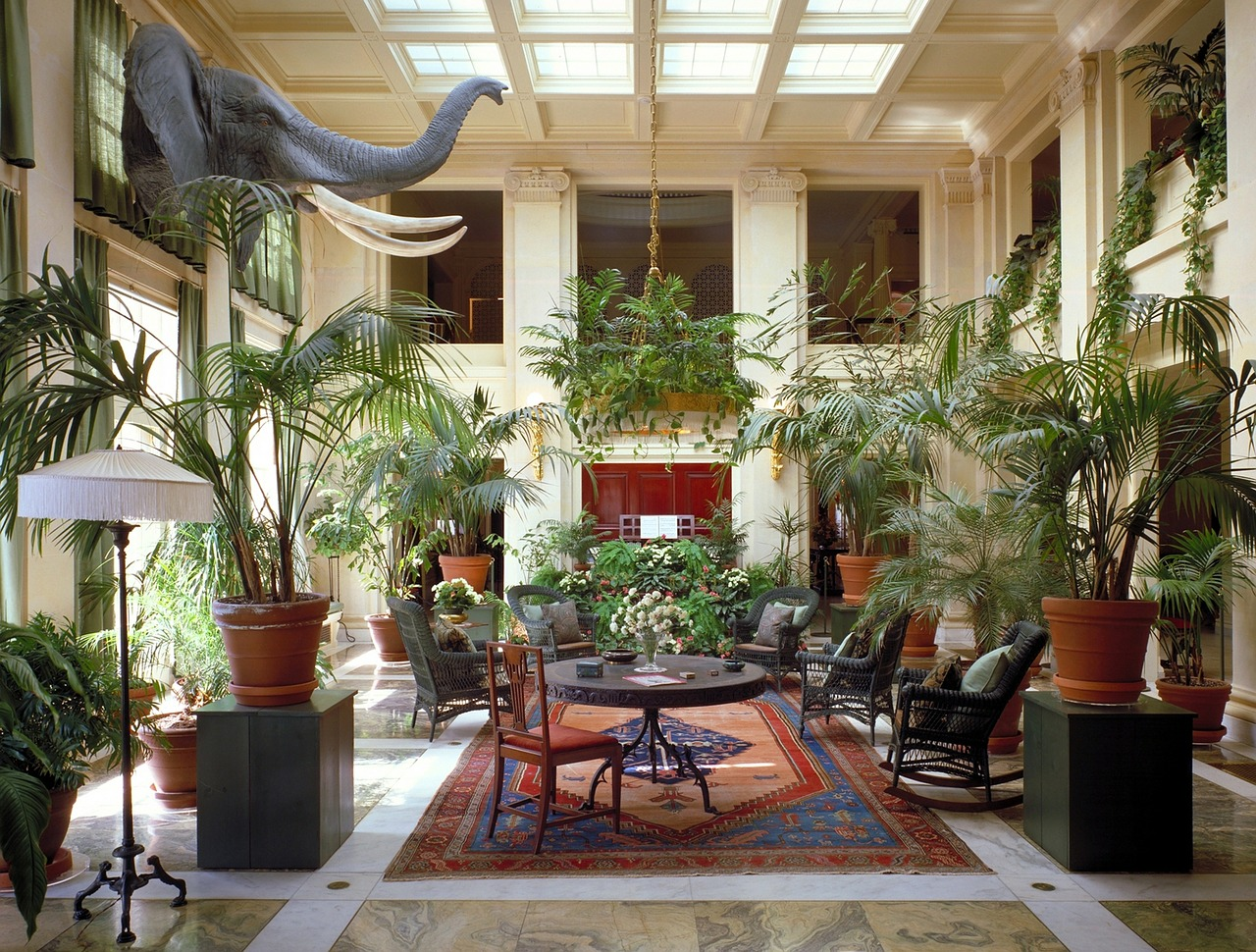 Dywan w luksusowej oranżerii